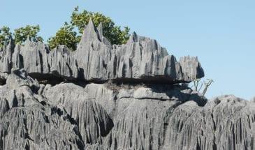 Tsingy de Bemaraha, Madabrousse
